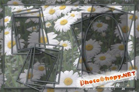 Рамка для фото - Ромашки