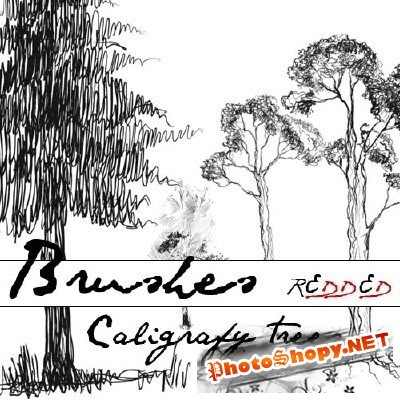 Caligrafy trees - creative PS brushes