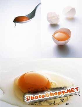 Клипарты - Яйца