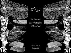 Wings Brushes 2