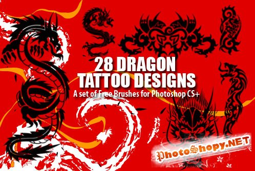 27 Dragon Tattoo