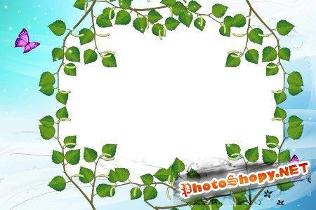 Рамка для фотошоп – В березовых листьях