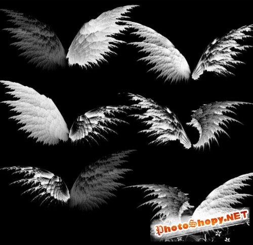 Кисти для фотошоп - Необычные крылья