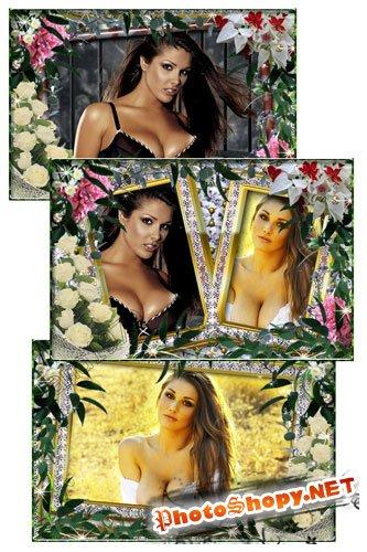 Рамка для фотошоп - Розы и листва