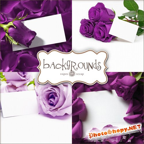 Textures - Lilac Roses Backgrounds