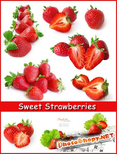 Sweet Strawberries - Stock Photos