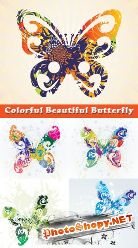 Colorful Beautiful Butterfly - Stock Vectors