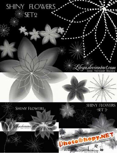 Кисти для Photoshop - Блестящий Цветы