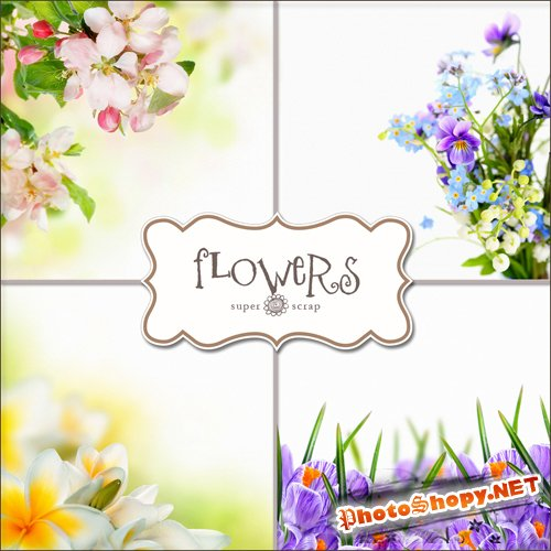 Textures - Flowers Backgrounds #21