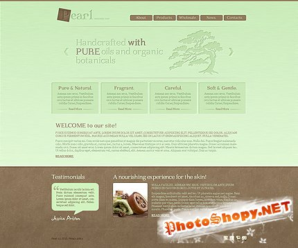 Pearl Soap Free Website Template