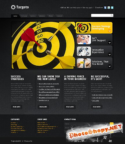 Free Target Business Website Template