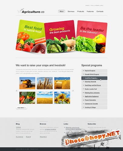 Agriculture Company Website Free Template
