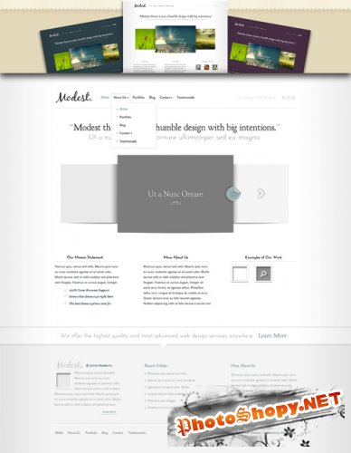Modest Wordpress Theme - Elegant Themes
