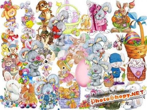 Collection Hares PSD