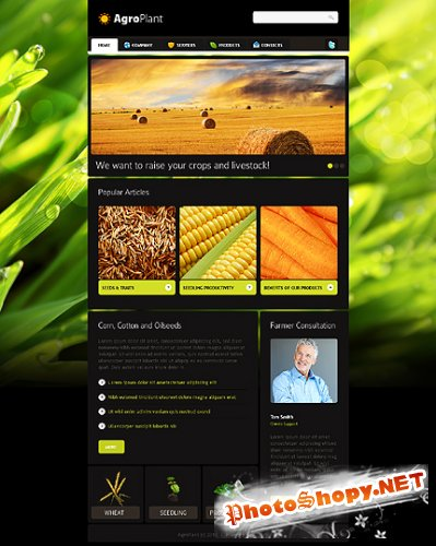 Free Agroplant Agriculture Website Template
