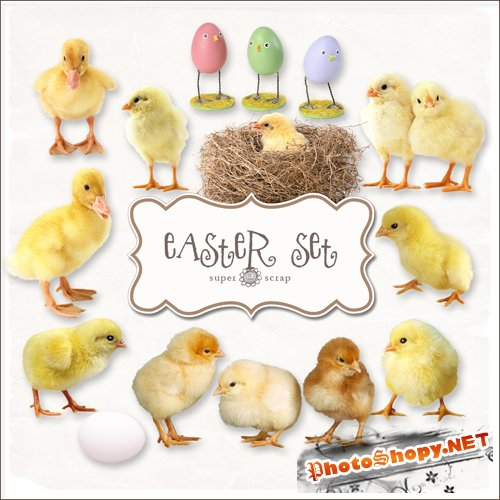 Scrap-kit - Easter Chickens