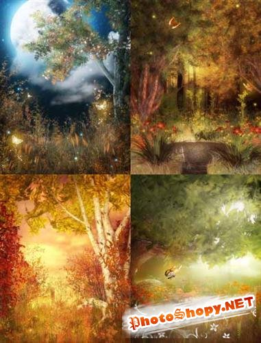New Forest fairy tale ( ������ ������ - ���� )
