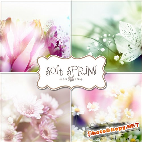 Textures - Soft Spring Backgrounds #3