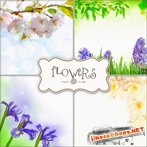 Textures - Flowers Backgrounds #26