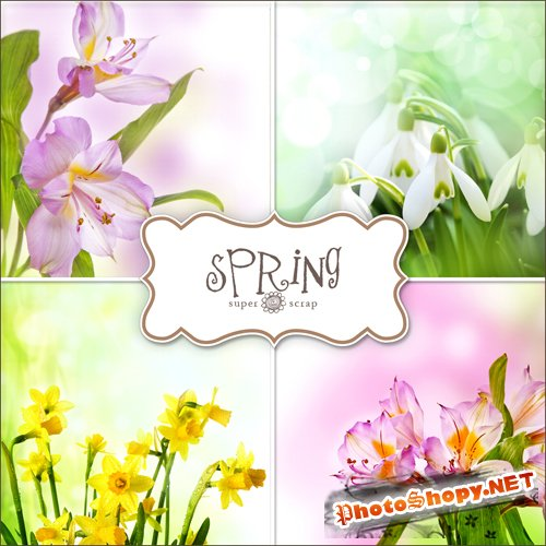 Textures - Spring Backgrounds #20