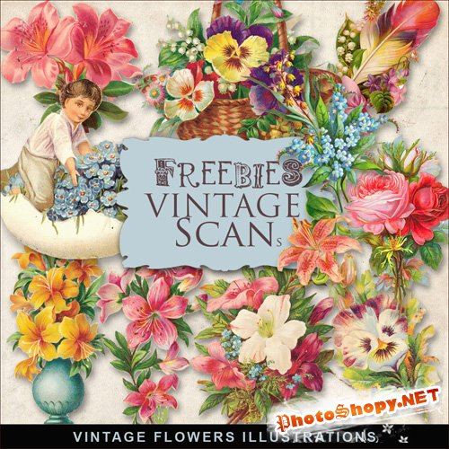Scrap-kit - Vintage Flowers Illustrations #3