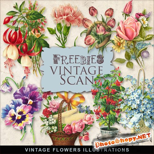 Scrap-kit - Vintage Flowers Illustrations #4