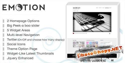 eMotion wordpress premium theme