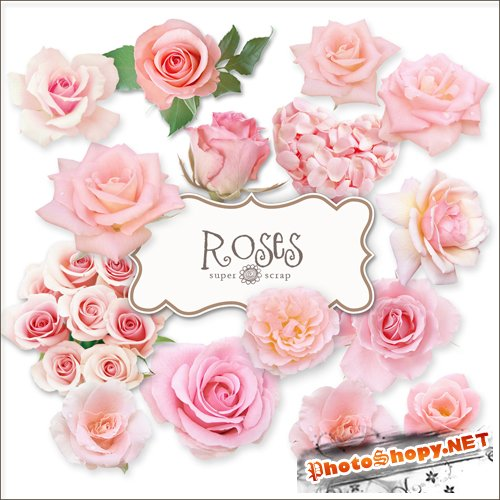 Scrap-kit - Vintage Roses Illustrations #2