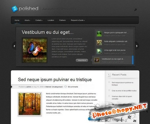 Polished Premium WordPress Theme nulled
