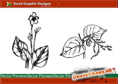 """Кисти для фотошопа и векторный вариант """"Рисунок молодой зелени"""""""