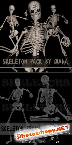 Skeleton Brushes & Skeleton PNG Cliparts by Diana