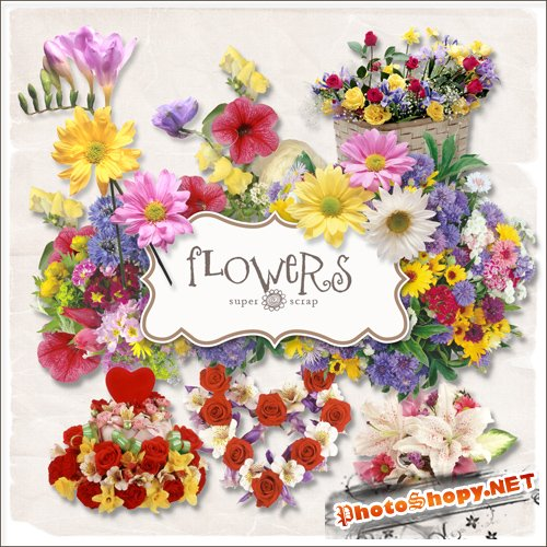 Scrap-kit - Summer Flowers