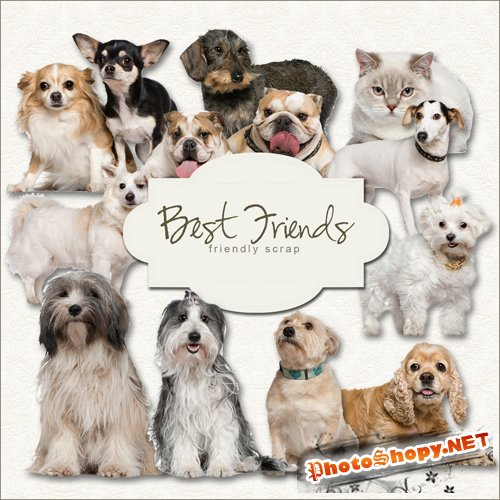 Scrap-kit - Best Friends