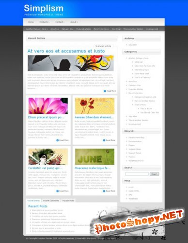 Simplism v2.8 - ElegantThemes WordPress Theme