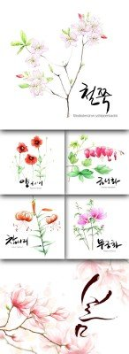 Flower backgrounds pack 15
