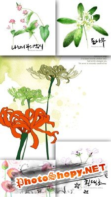 Flower backgrounds pack 18