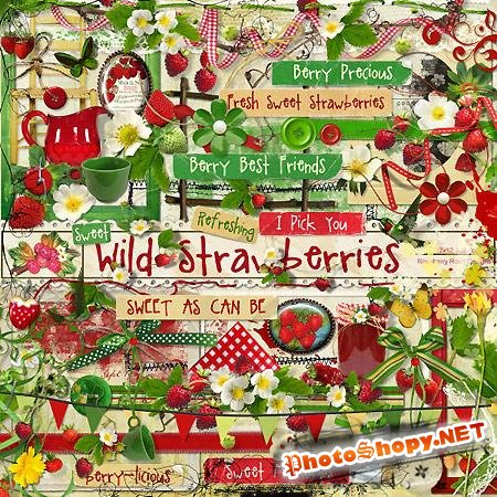 Мини скрап-набор - Wild Strawberries
