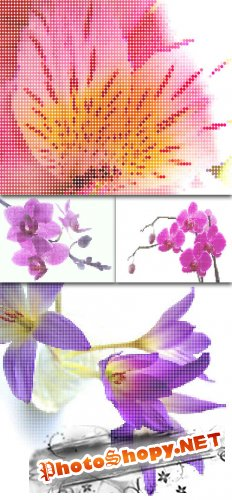 Dots Flower Vector Backgrounds
