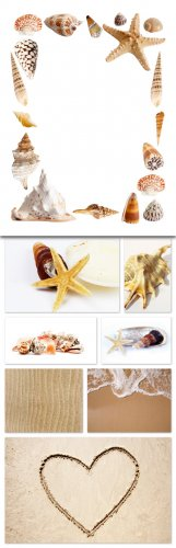 Sea, Shell, Sand Cliparts