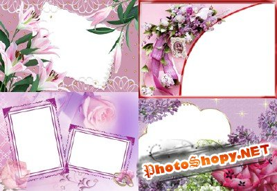 Photo Frame - Beautiful delicate flower