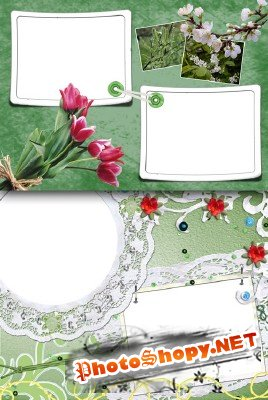 Photo Frame - Spring flowers early