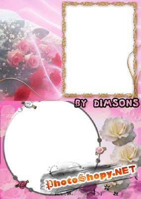 Photo Frame - White and pink roses