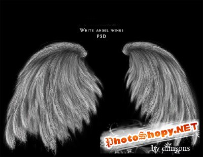 White angel wings psd