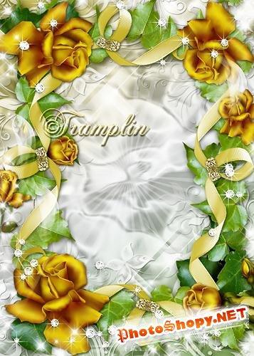 Рамка для фото с розами и лентами  -  Золотые розы в ленты заплела