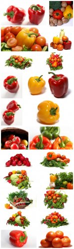 Vegetable Cliparts - vegetables, tomatoes, peppers, greens, white background