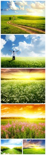 Field Backgrounds #1