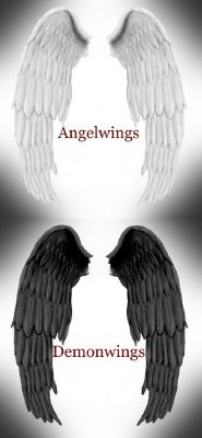 Angel and Demon Wings PSD