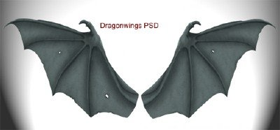 Dragon Wings PSD