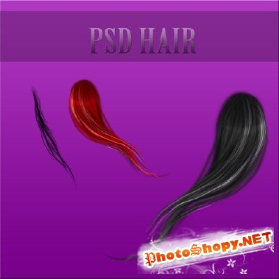 Psd hair file