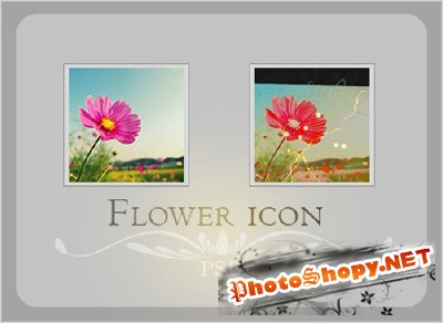 Flower icon Psd